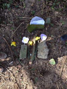 poes huisdier dood afscheid begraven