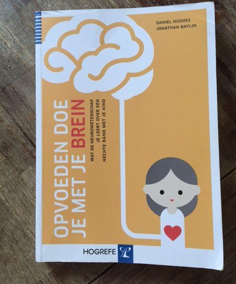 review boek opvoeden doe je met je brein ouderschap opvoeding ouders kinderen inzicht begrip acceptatie nieuwsgierigheid empathie speelsheid geblokkeerde zorg sane