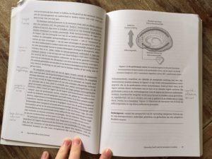 boek review opvoeden doe je met je brein stress geblokkeerde zorg ouderschap ouder-kindrelatie interactie met je kind opvoedproblemen