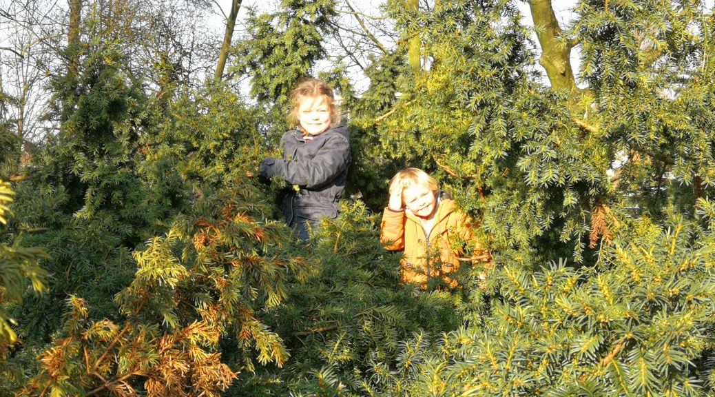 ga naar buiten want daar ben je gelukkig buiten spelen kinderen speeltuin kinderboerderij welzijn depressie therapie ontspannen actief wandelen bomen klimmen spelen tevreden