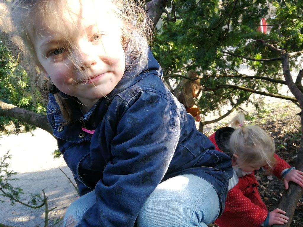 buiten spelen park bos bomen klimmen kinderen ontspannen ouders gezin speeltuin