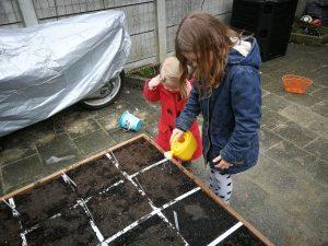 makkelijke moestuin zaaien planten oogsten gezin tuin project kinderen