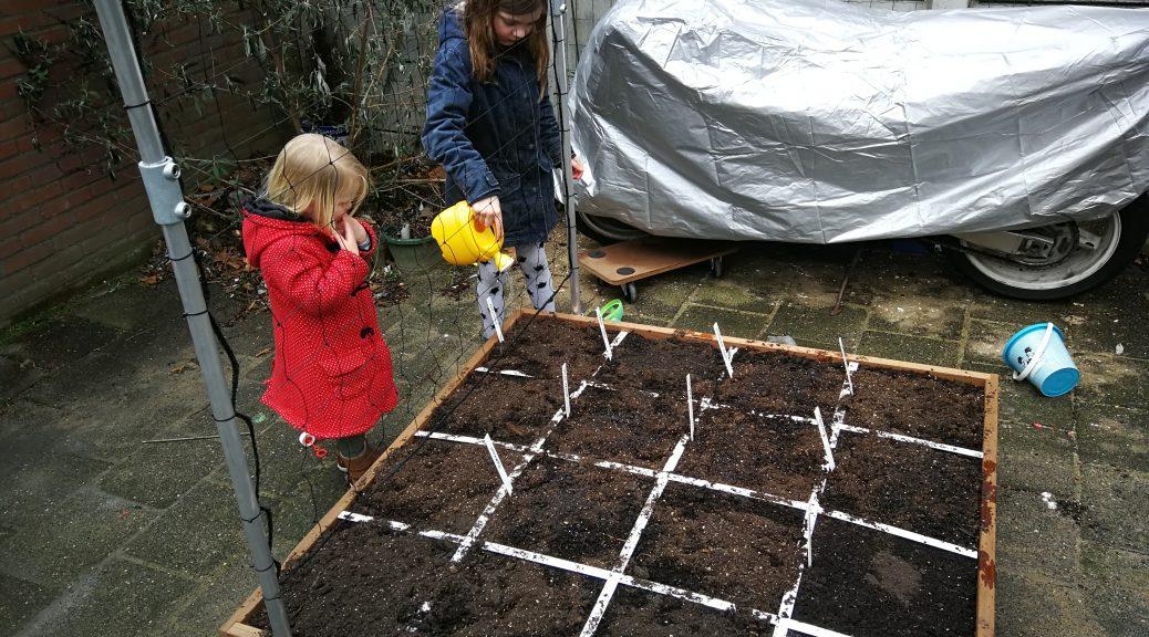 makkelijke moestuin mini moestuin moestuinbak zaaien planten oogsten tuin kinderen gezin zaadjes kiemen project aan de slag